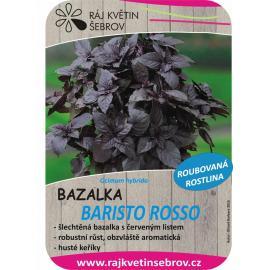 Roubované bazalka Baristo Rosso