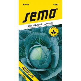 Zelí hlávkové RITMO F1