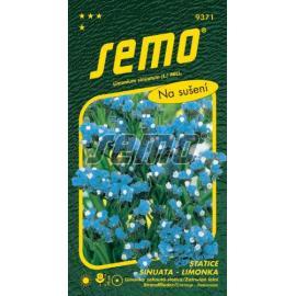 Statice (limonka) BLUE