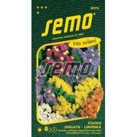 Statice (limonka) SMĚS
