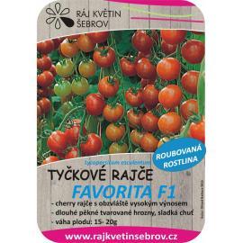 Roubované tyčkové rajče Favorita F1