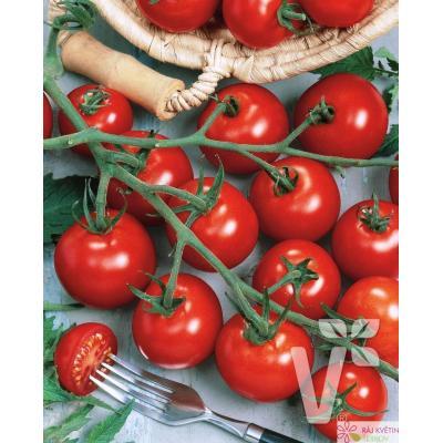 Roubované tyčkové rajče Picolino F1