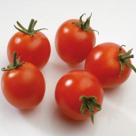 Roubované tyčkové rajče Supersweet