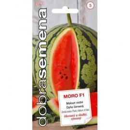 Meloun MORO F1