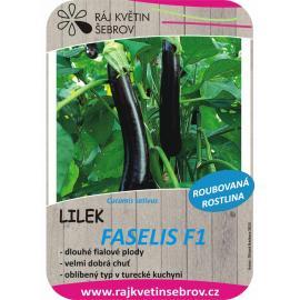 Roubovaný lilek Faselis F1